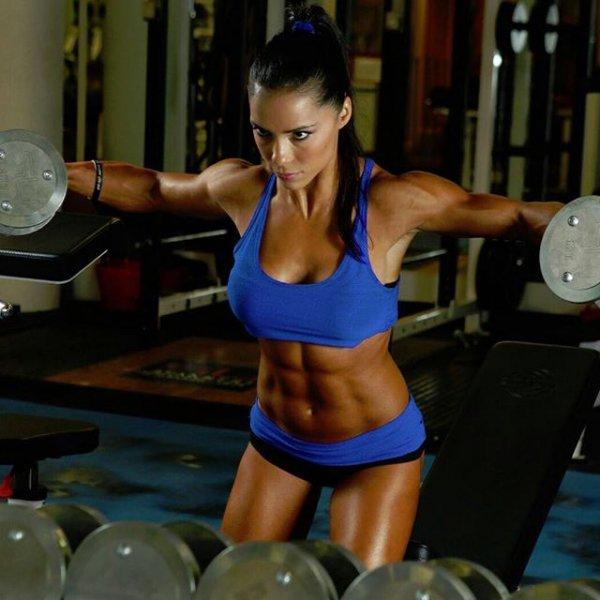 person, bodybuilding, human action, weight training, sports,