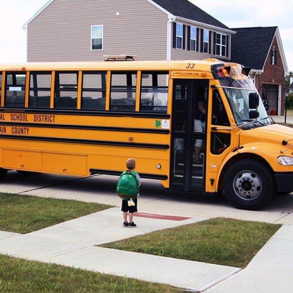 bus, vehicle, transport, school bus, tour bus service,