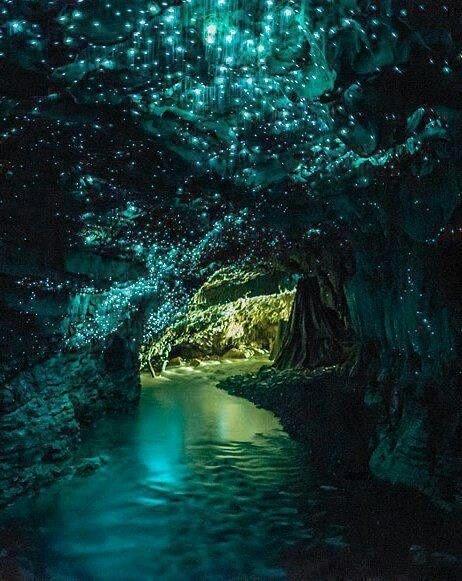 Glow Worm Cave, New Zealand