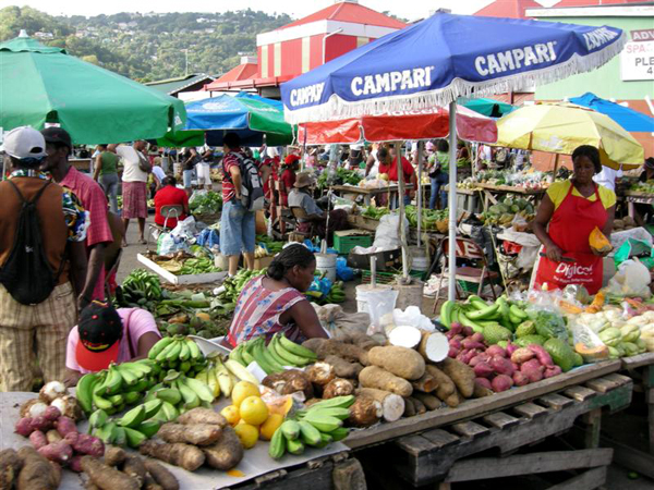 Explore Castries 7 Fabulous Things To Do In St Lucia