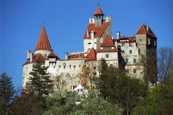 Go Bats At Dracula S Castle In Transylvania Romania