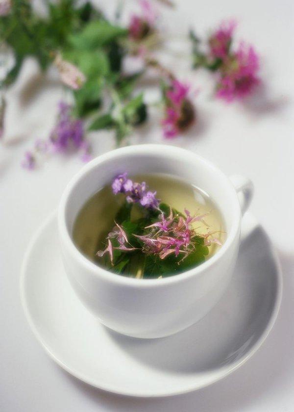 Drink Some Chasteberry Tea