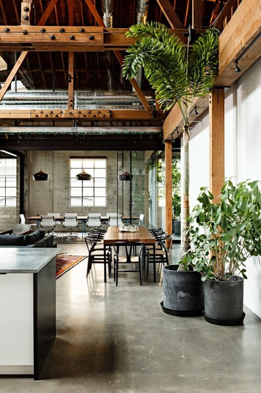 High ceilings house plants 40 stunning examples of for Industrial flooring for homes