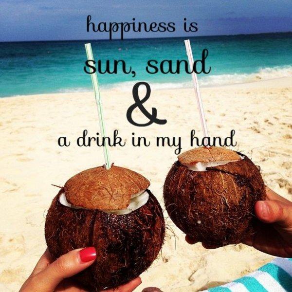 coconut,food,happiness,Sun,,drink,
