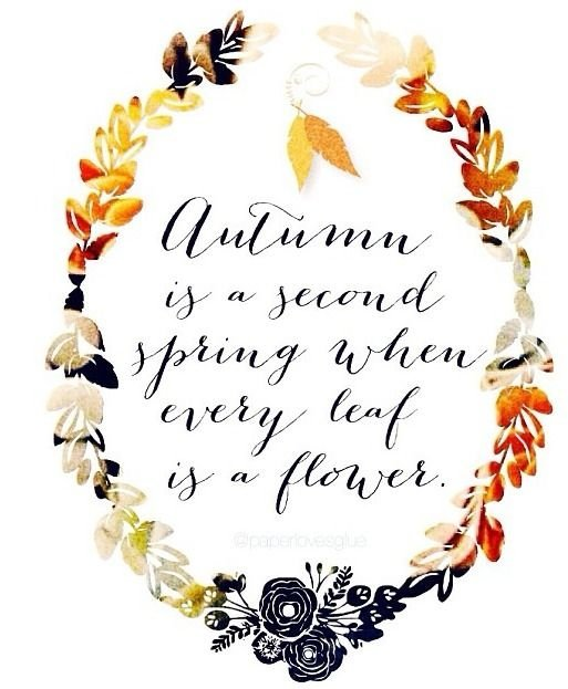 19 Lovely Quotes about Autumn ... Inspiration