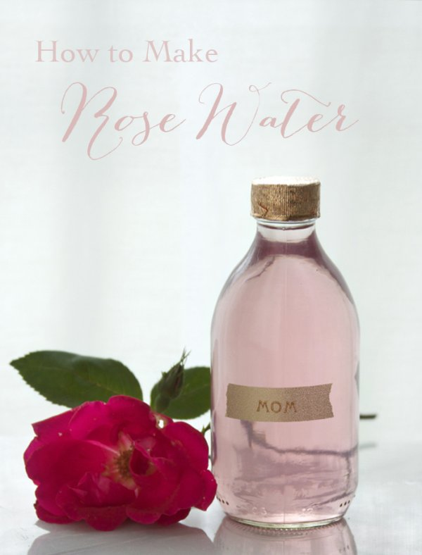 How to Make Wild Rose Water for a Natural Skin Freshener/toner