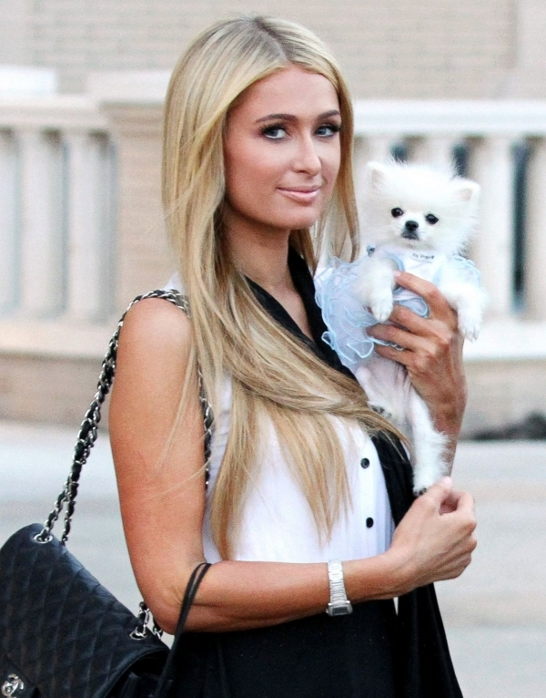 5 paris hilton 19 hottest celebrities reportedly infected with. Black Bedroom Furniture Sets. Home Design Ideas