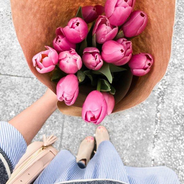 pink, flower, magenta, finger, hand,