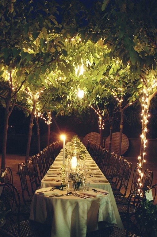 Outdoor Nature Reception