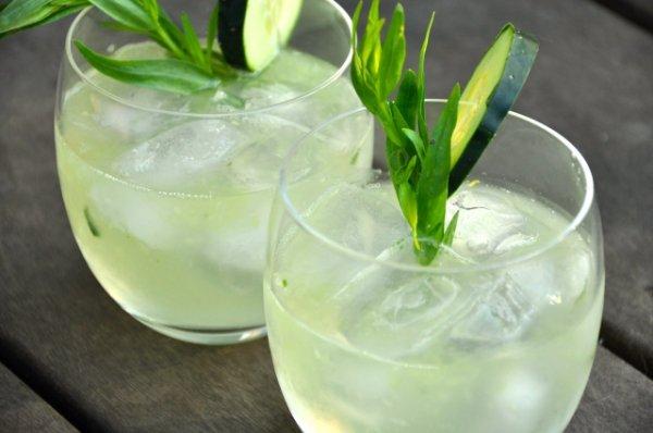 Tarragon-Cucumber Water