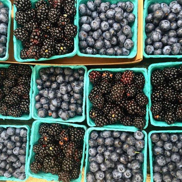 blackberry, food, produce, plant, berry,