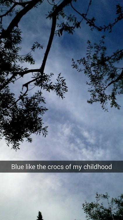 sky, nature, blue, plant, tree,