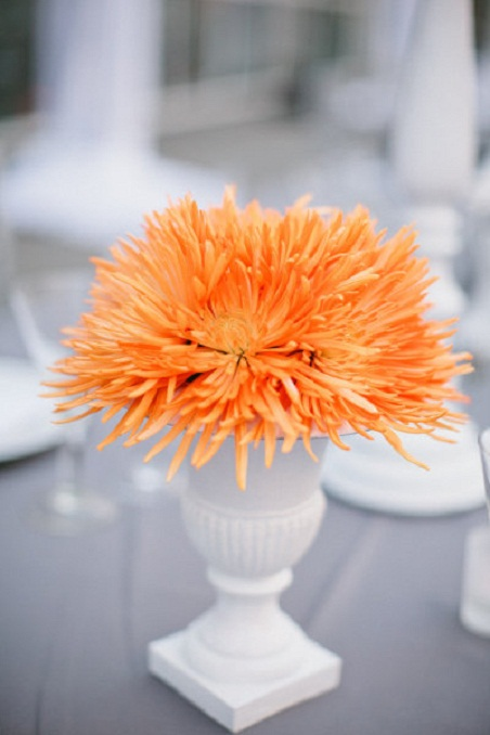 Tangerine Tango Wedding Color Trend...