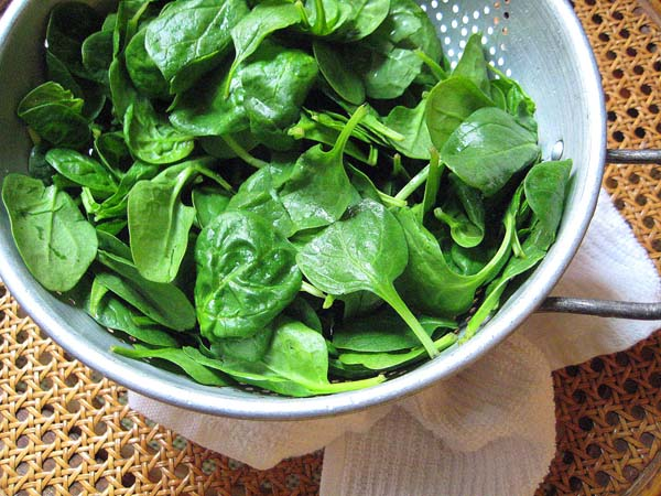 Foods That Are Scrumptious in Spring