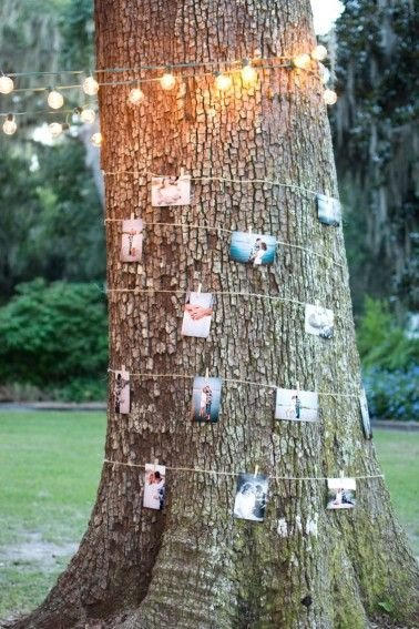 Tree Photos of the Happy Couple