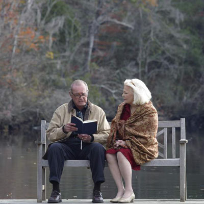 The Notebook: a Tale of Eternal Love Celebs