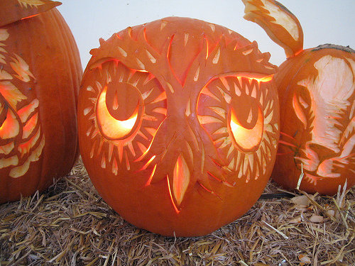 Owl pumpkin cool ideas for pumpkins this halloween