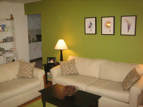 Living Room Green 9 great colors for your living room  lifestyle