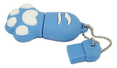 Blue Paw 4GB Flash Drive