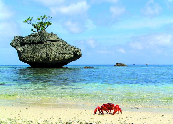 Christmas Island Australia  city pictures gallery : 15. Christmas Island, Australia Alternative Places to Spend…