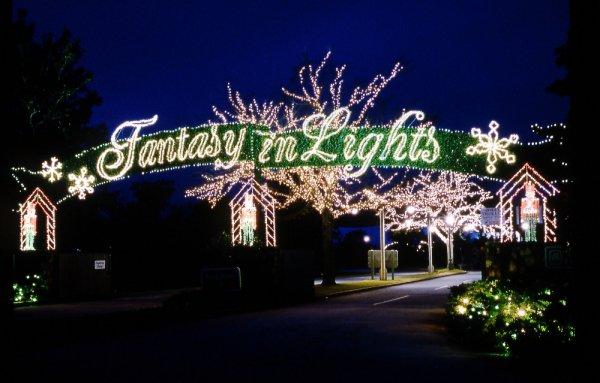 christmas lights, tree, christmas decoration, night, christmas,