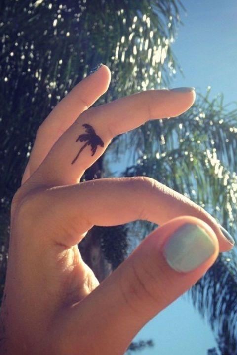 14  palm tree