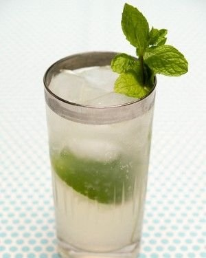 drink,mint julep,mojito,cocktail,alcoholic beverage,