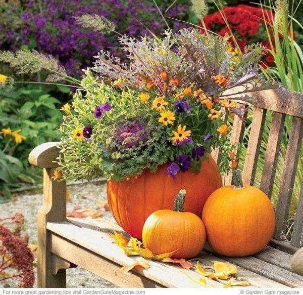 A bench 46 fun ideas for your little flower garden for Decoration jardin halloween