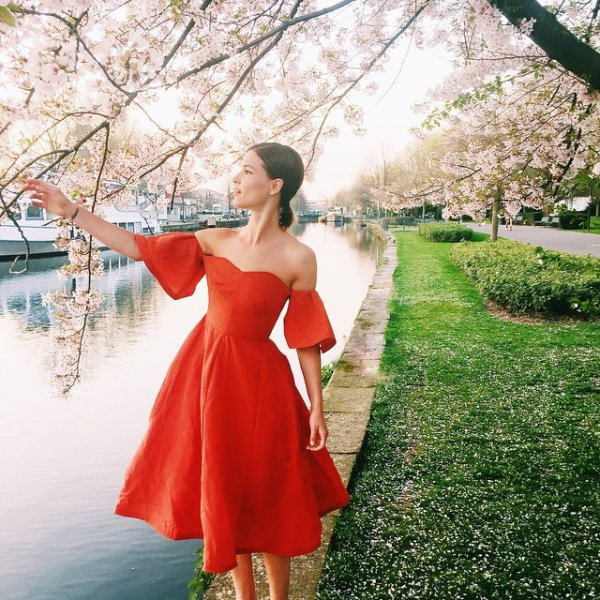flower, red, dress, pink, gown,