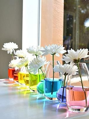 Tint Flower Water with Food Coloring