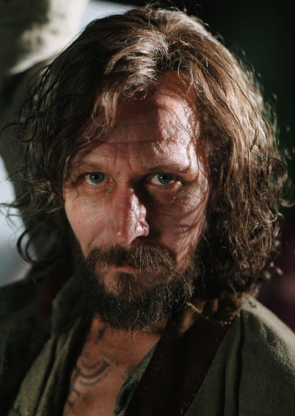 Sirius Black in Harry Potter and the Order of the Phoenix