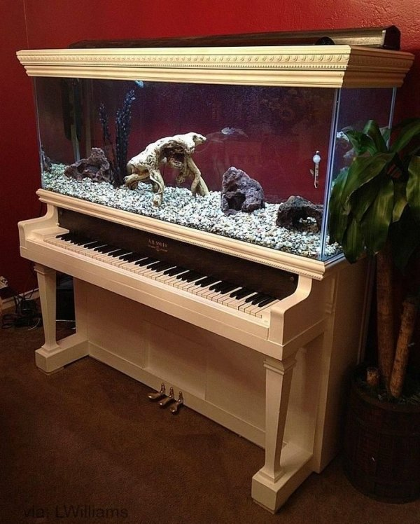 Piano Aquarium - 28 Everyday Items Turned into Fish Tanks and…