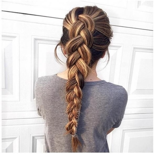 hair,hairstyle,braid,long hair,french braid,
