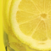 7 Facts about Lemons ...