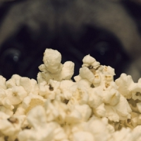 7 Yummy Popcorn Flavors to Try ...