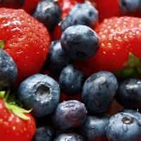 8 Great Summer Diet Snack Foods ...