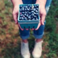 Top 10 Foods with Antioxidants ...