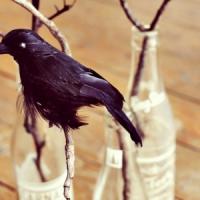 8 Creative and Crafty DIY Halloween Crow Decor ...
