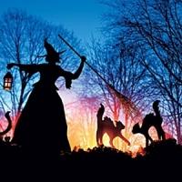 10 Spooky DIY Witch Halloween Decor ...