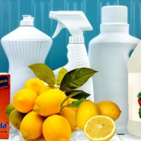 7 Green Cleaning Tips ...