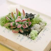 7 Amazing Projects to Make from Old Books ...