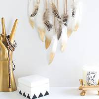Create Something Whimsical and Bohemian with One of These DIY Feather Crafts ...