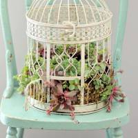 7 Adorable DIY Ideas to Give Your Garden a Touch of Whimsy ...