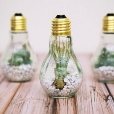 Awesome Enlightenment! You Have to See These Things You Can Make with Light Bulbs ...