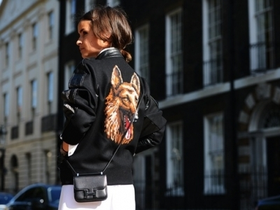 7 Adorable Animal Accessories to Add to Your Collection ...