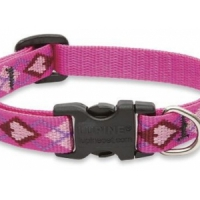 8 Adorable Small Dog Collars to Splurge on ...