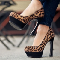 8 Animal Print Must-Haves ...