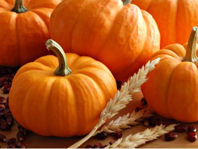 7 Reasons Why Pumpkin Is Good for You ...