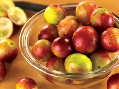 7 Amazing Benefits of Camu Camu That You Should Know ...