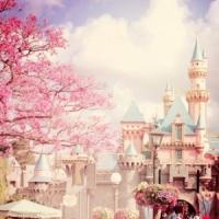 7 Best Restaurants in Walt Disney World ...